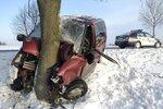 Atak zimy 2010.jpg